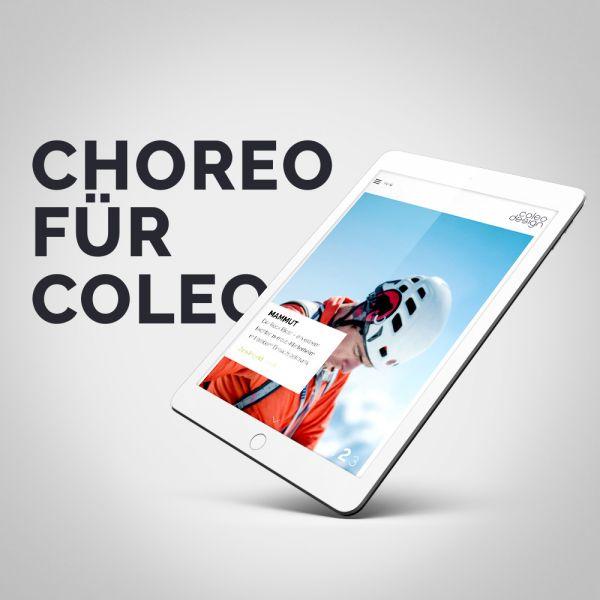 coleo design GmbH
